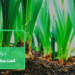 دراسة الهندسة الزراعية في تركيا